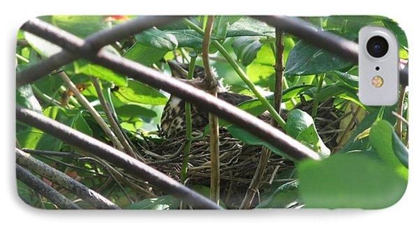 Nesting IPhone Case by Deborah DeLaBarre