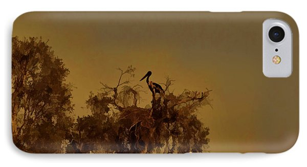 Nesting Jabiru  IPhone Case by Douglas Barnard