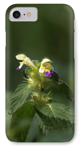 IPhone Case featuring the photograph Nettle by Leif Sohlman