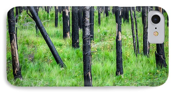 New And Old Burnt Trees And New Grass Glacier National Park IPhone Case
