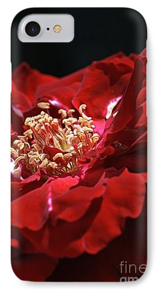 IPhone Case featuring the photograph New Dream by Joy Watson