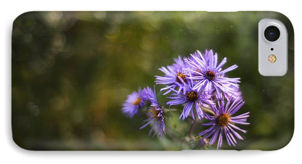 New England Asters IPhone Case by Scott Norris