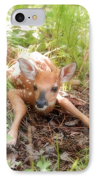 New Fawn In The Forest IPhone Case by Angie Rea