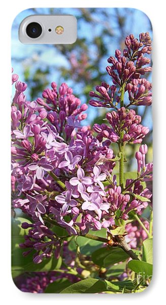 IPhone Case featuring the photograph Purple Lilac by Eunice Miller
