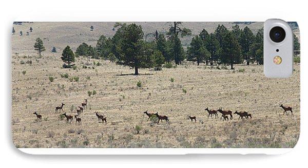 New Mexico Elk Herd IPhone Case by Jack Pumphrey