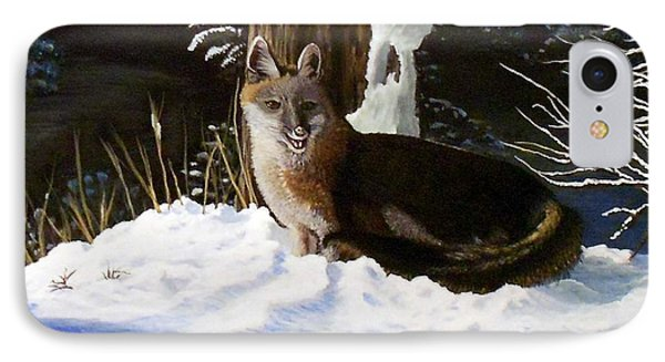 New Mexico Swift Fox IPhone Case by Sheri Keith