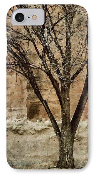 New Mexico Winter IPhone Case by Carol Leigh