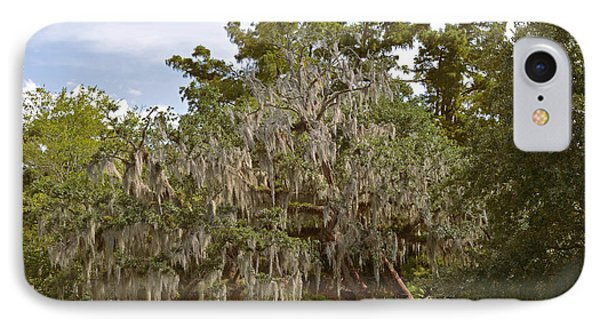 New Orleans Spanish Moss Phone Case by Christine Till