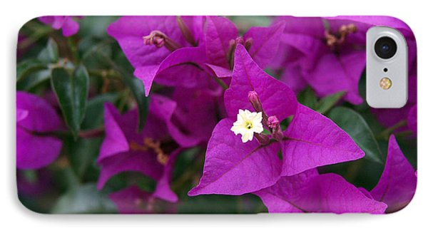 New River Bougainvillea IPhone Case by Rona Black