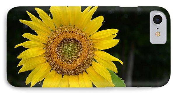New Sun IPhone Case