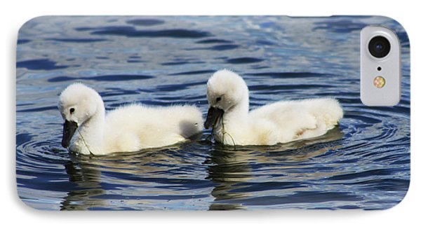 IPhone Case featuring the photograph Newborn Mute Swans by Alyce Taylor