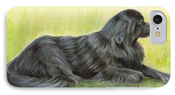 Newfoundland Dog IPhone Case