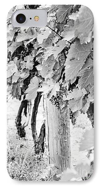 Niagara Grapes No.2 IPhone Case by Scott Pellegrin