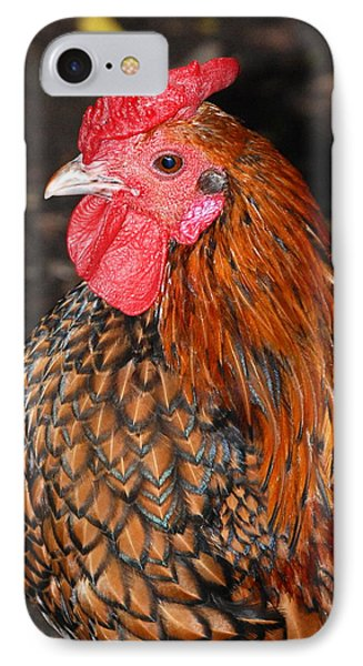 Nice Breast IPhone Case by Kathy Gibbons