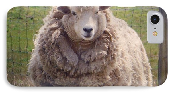 Nice To Meet Ewe IPhone Case by Penni D'Aulerio