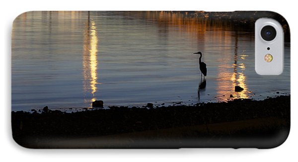 IPhone Case featuring the photograph Night Fishing - A Great Blue Heron  by Jane Eleanor Nicholas
