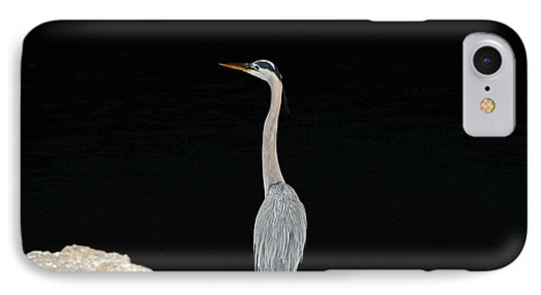 IPhone Case featuring the photograph Night Of The Blue Heron 2 by Anthony Baatz