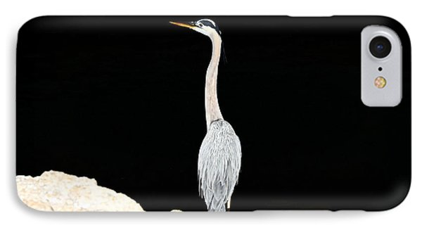 IPhone Case featuring the photograph Night Of The Blue Heron  by Anthony Baatz