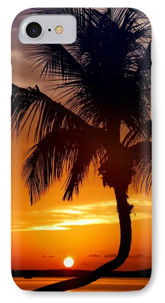 Night Of The Sun Phone Case by Karen Wiles