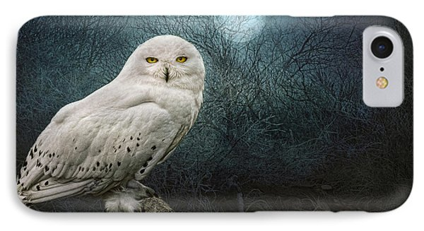 Night Owl IPhone Case by Brian Tarr