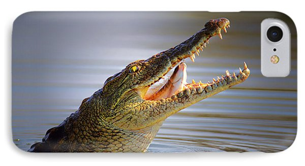 Nile Crocodile Swollowing Fish Phone Case by Johan Swanepoel