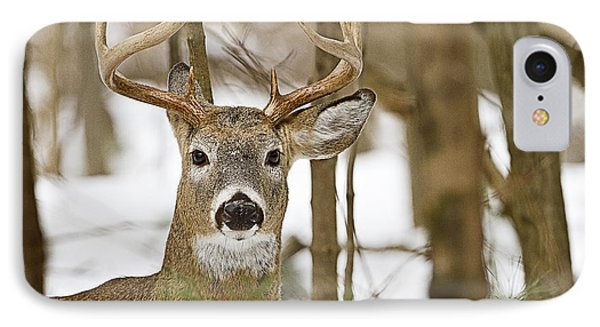 Nine Point White Tailed Buck Phone Case by John Vose