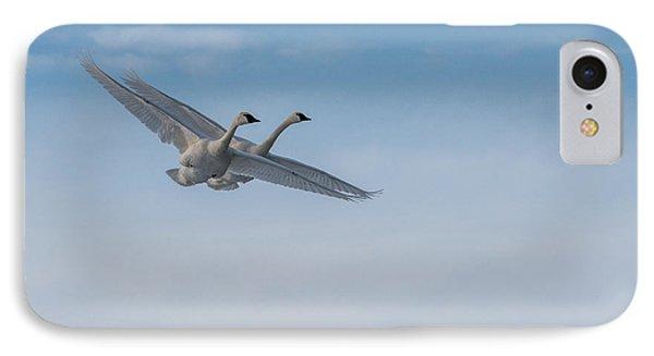 Trumpeter Swans Tandem Flight IPhone Case