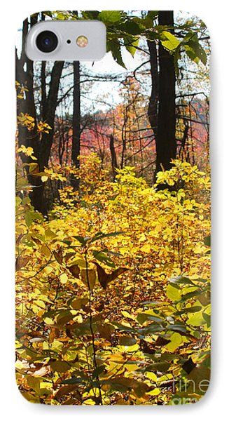 Noanet Woodlands Fall Foliage IPhone Case