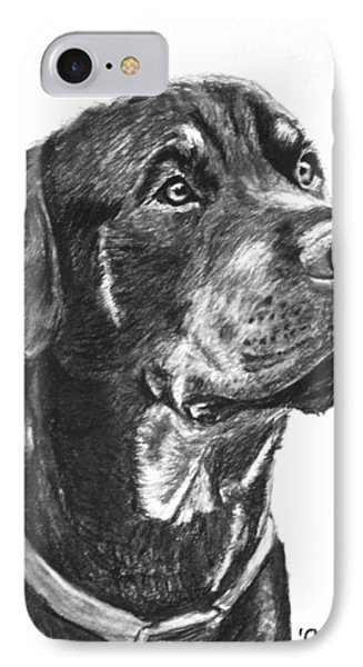 Noble Rottweiler Sketch Phone Case by Kate Sumners
