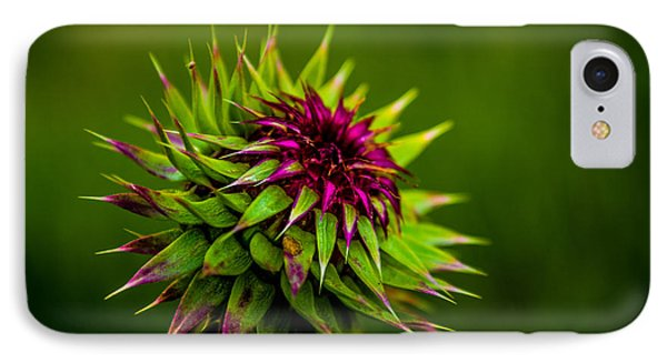 Nodding Spines IPhone Case by Rhys Arithson