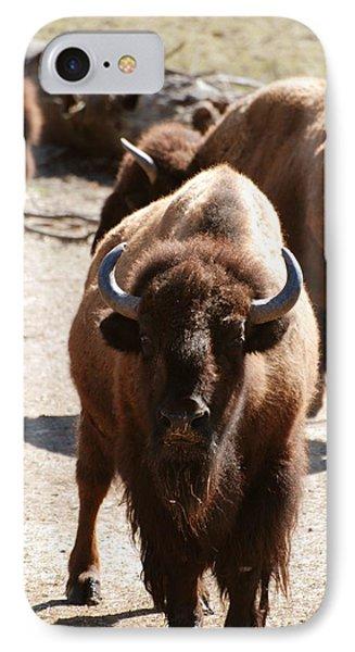 North American Bison IPhone Case by DejaVu Designs