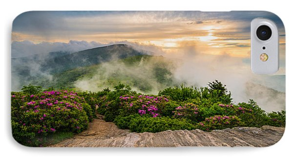 North Carolina Appalachian Trail Spring Blue Ridge Mountains IPhone Case by Dave Allen