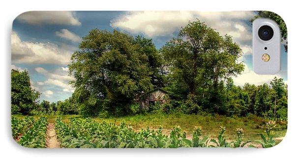 North Carolina Tobacco Farm IPhone Case by Benanne Stiens