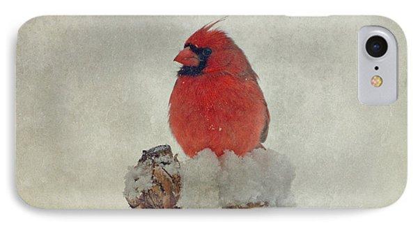 Northern Cardinal Phone Case by Sandy Keeton