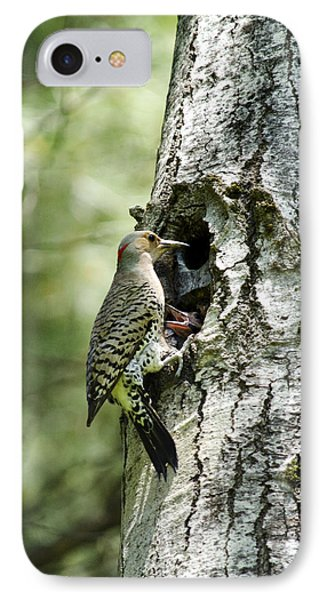 Northern Flicker Nest IPhone Case by Christina Rollo