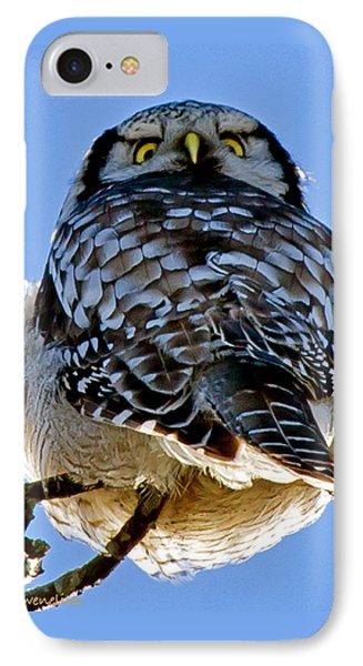 Northern Hawk Owl Looks Around IPhone Case by Torbjorn Swenelius
