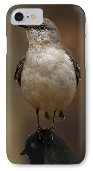 IPhone Case featuring the photograph Northern Mockingbird by Robert L Jackson
