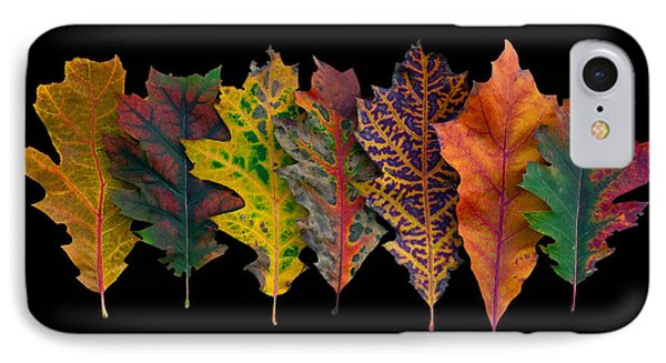 Northern Red Oak Leaves In Autumn IPhone Case by Frans Hodzelmans