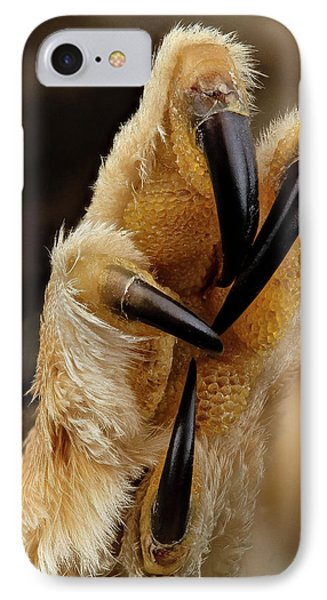 Northern Saw-whet Owl Foot IPhone Case