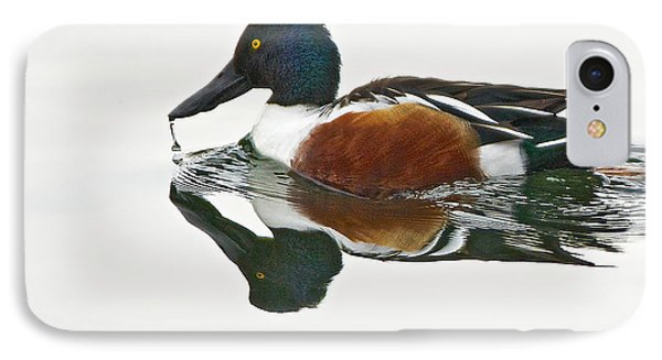 Northern Shoveler Drake At Ketring Lake IPhone Case by Stephen  Johnson
