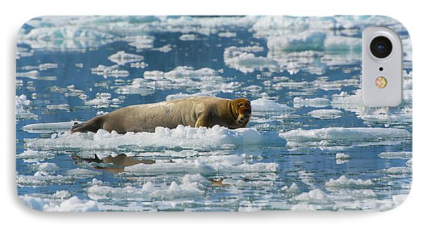 Norway Svalbard Hornsund Burgerbutka IPhone Case by Inger Hogstrom