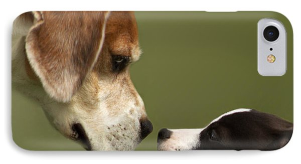 Nose To Nose Dogs 2 IPhone Case
