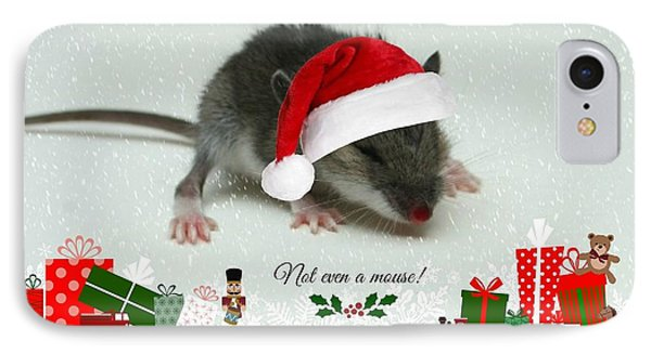 Not A Creature Was Stirring IPhone Case by Barbara S Nickerson