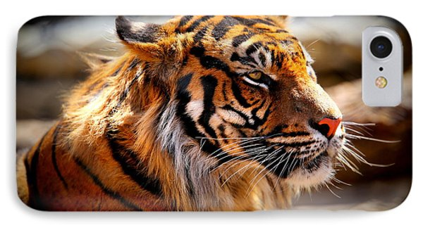 Not A Tigger IPhone Case by Lynn Sprowl