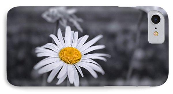 November Daisy IPhone Case by Brian Caldwell
