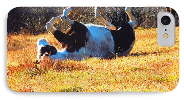 November Pasture Bliss IPhone Case by Anastasia Savage Ealy