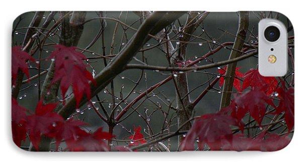 November Rain IPhone Case
