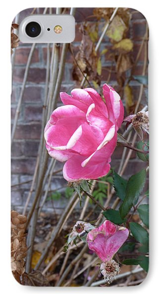 IPhone Case featuring the photograph November Rose by Margie Avellino