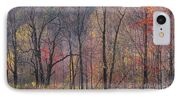 November Woods IPhone Case
