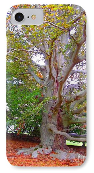 IPhone Case featuring the photograph Now This Is A Tree by Becky Lupe